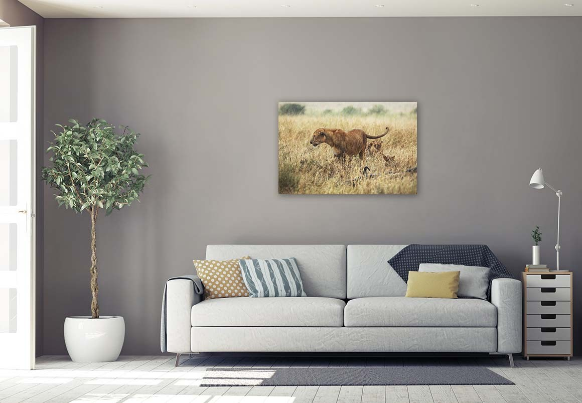 Leona del Serengueti 60x90