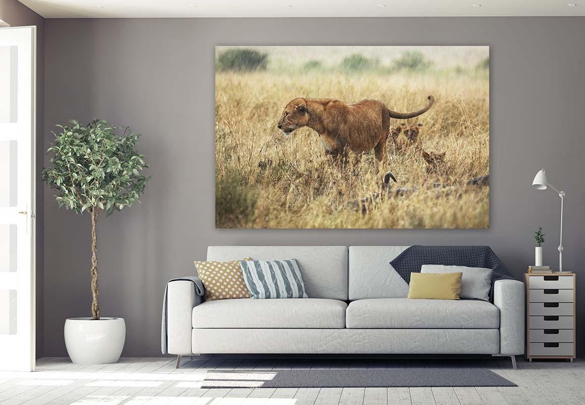 Leona del Serengueti 120x180
