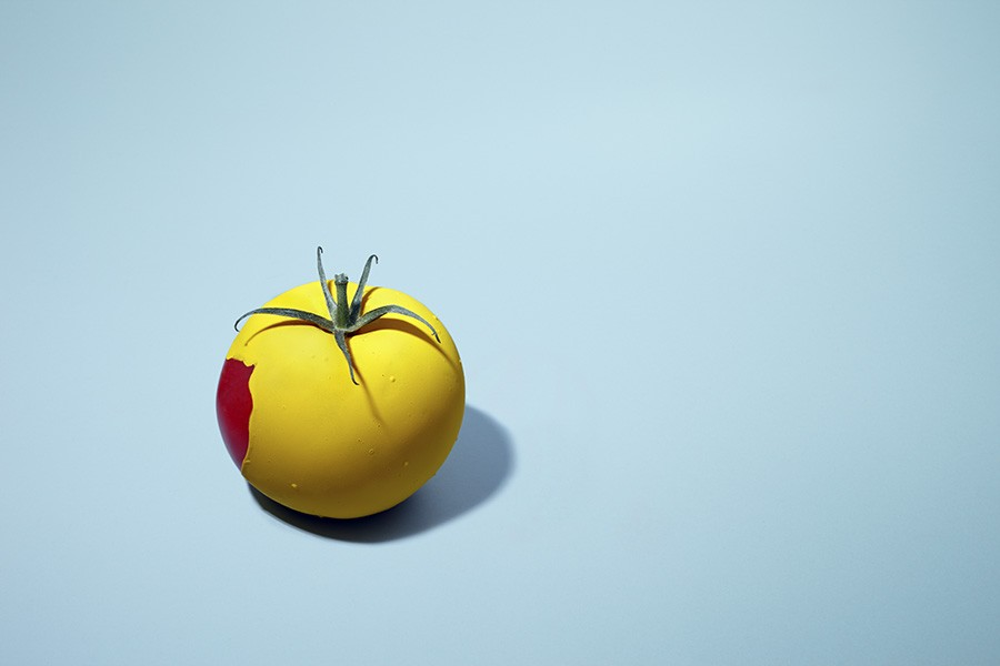 Yellow Tomate